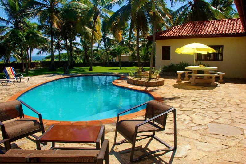 Hay varias zonas de asientos alrededor de la piscina, bajo la sombra y algunos en el sol.
