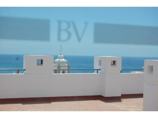Communal terrace, with sunbeds and great sea views