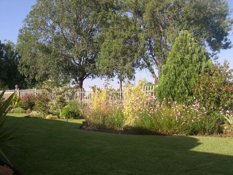 -Garten