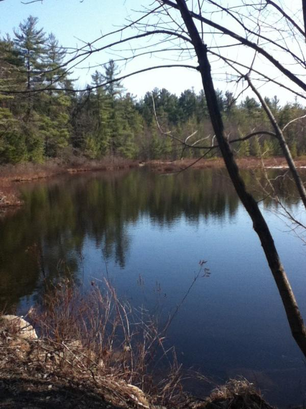 Willis Lake - a half mile walk from the house. This is a non-motor boat lake.
