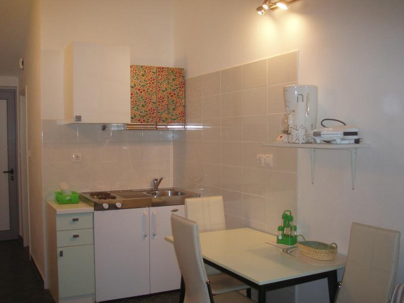 Green apartment kitchen