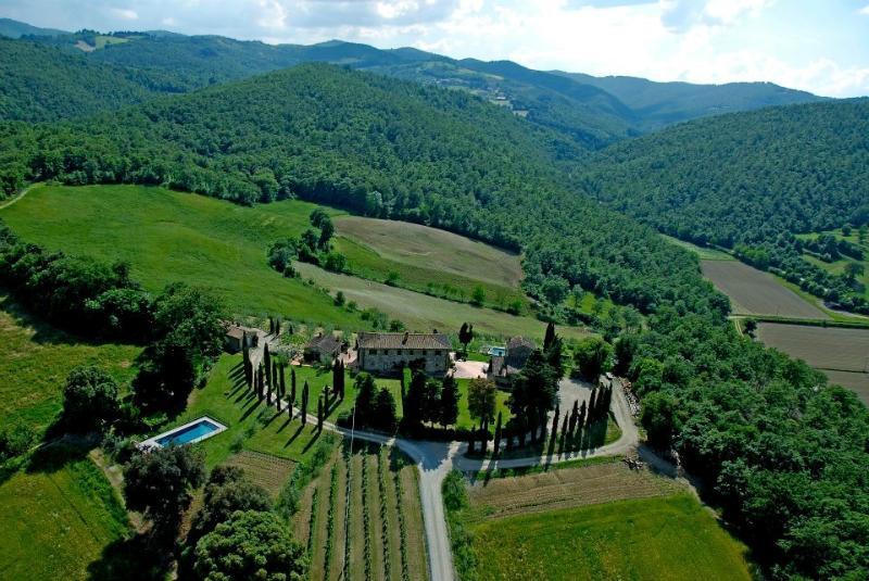 AGRITURISMO IN COLLINA CON GRANDE PARCO E PISCINA, holiday rental in Anghiari