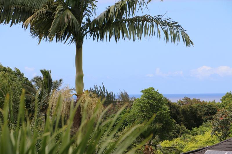 Peek-A-Boo Ocean view from Master Lanai.