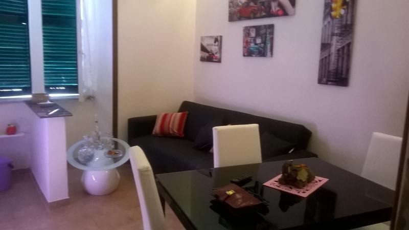 mesa de comedor 4 sillas y sofá cama y tv plana