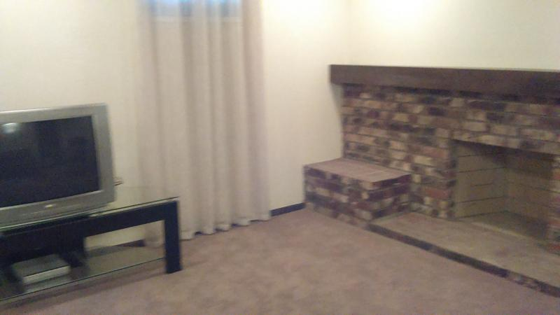 down LR and Fireplace