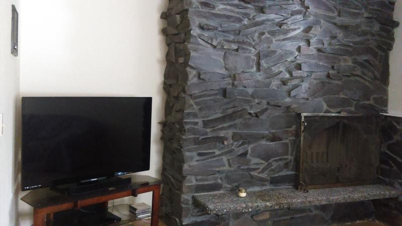LR fireplace and 60 inch tv