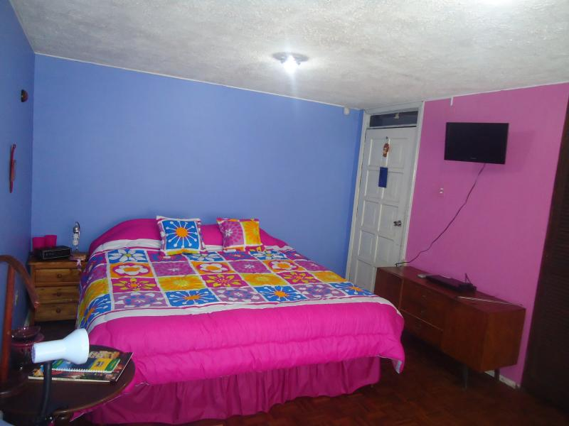 Beautiful I-bedroom in the background, colors: fuschia, heavenly cake and wood, furniture on the side