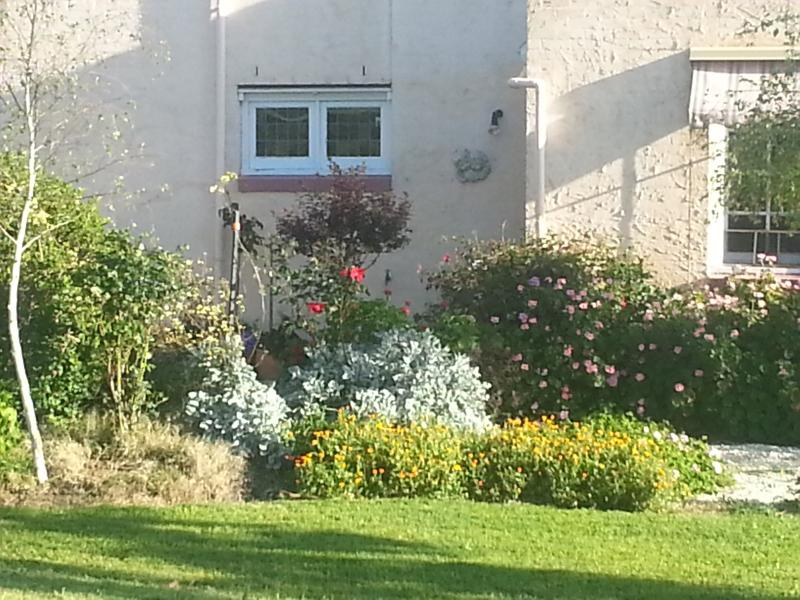 A pretty cottage garden greets you.