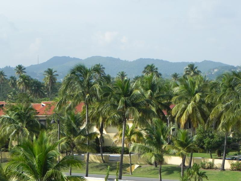 View to El Yunque from 2nd floor suite