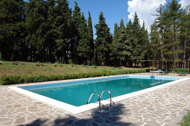 Swimming pool 6 x 12 ml