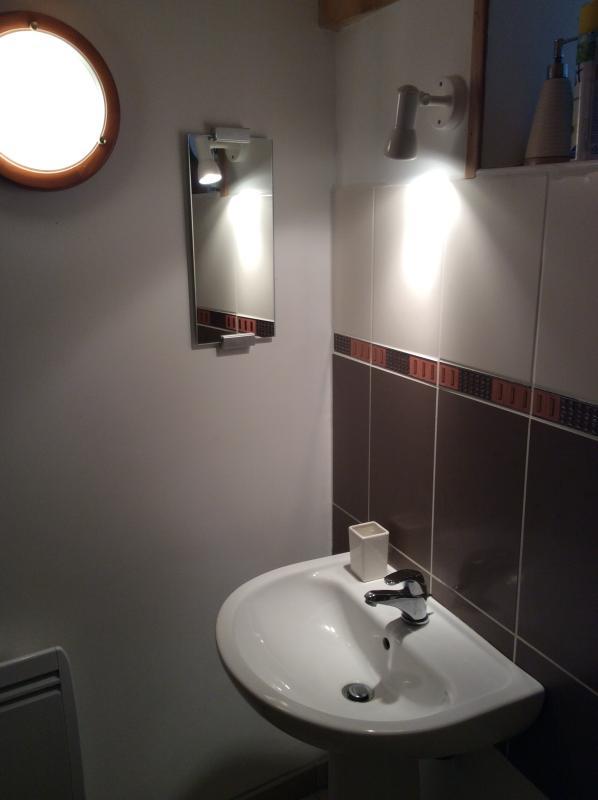 Basement Shower & WC