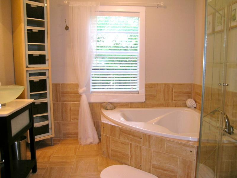 duche e banheira separados para dois no banheiro no térreo