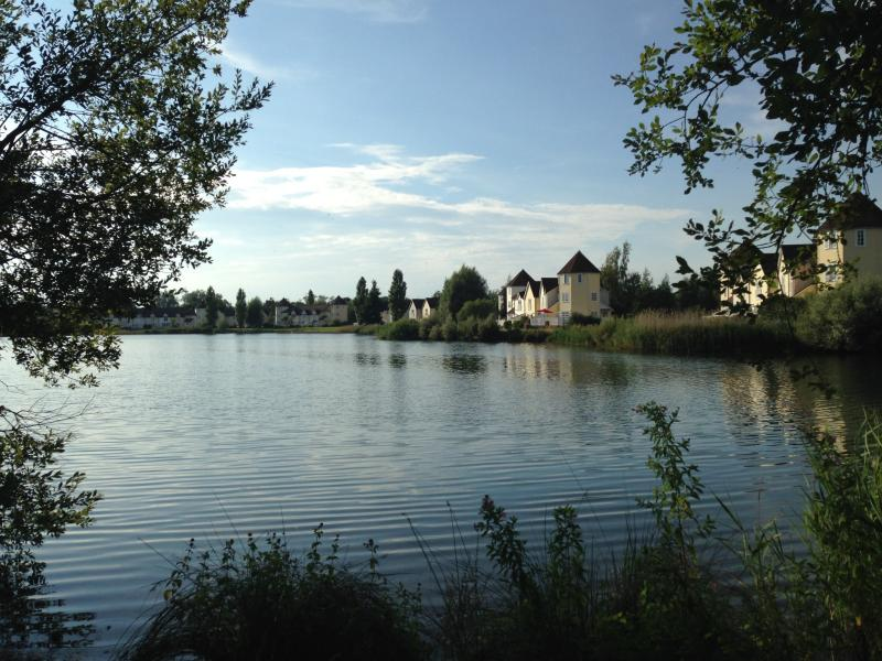 Peaceful lake views