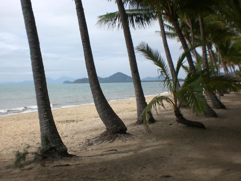 'Paradise' ~  Palm Cove Beach