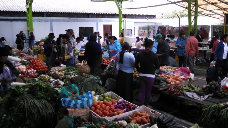 Lots of activity at the market every day!