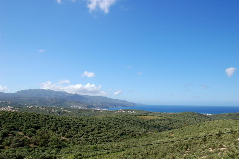 View from the Upper Balcony over the olive groves and the sea beyond