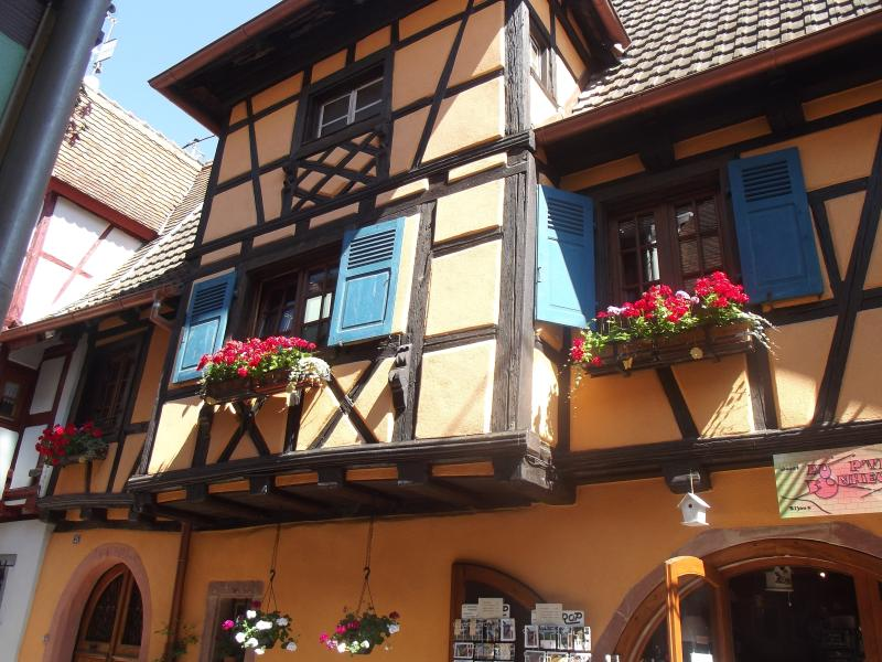 Les remparts, holiday rental in Eguisheim