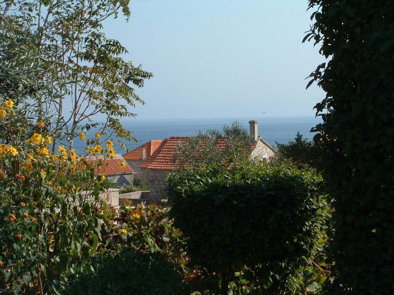 vue (maison et environs)