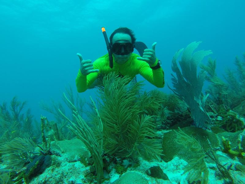 Free diving on the spectacular reef!