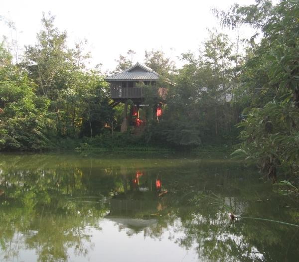 Vista desde el estanque