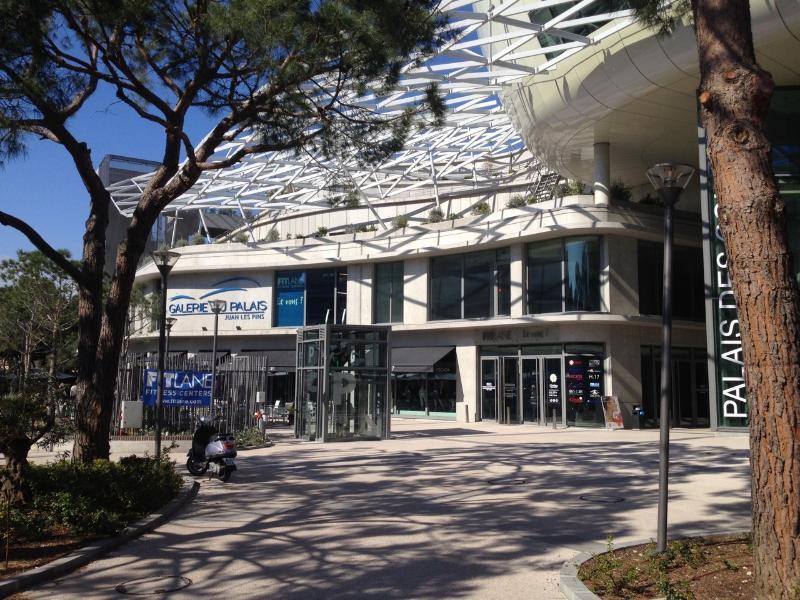 Le palais des congrès avec galerie marchande et supermarché (a 300 m de l'appartement))