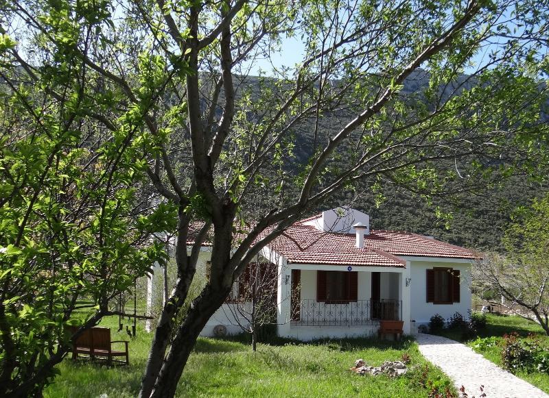 Owlsland Cottage, holiday rental in Bezirgan