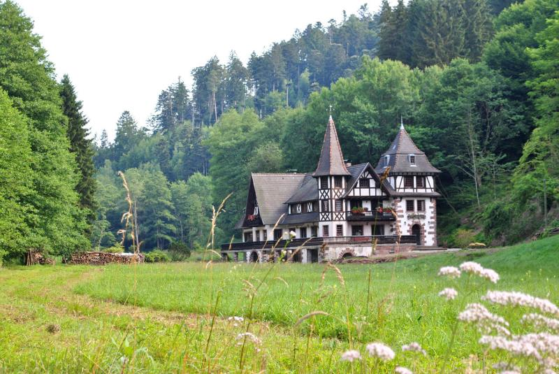 Le saint moulin de la Petite Pierre, vacation rental in Meisenthal