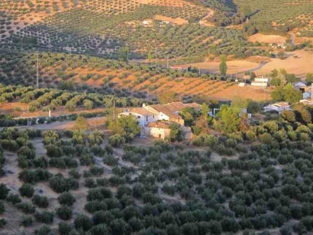 """Blick auf Olive Grove Bauernhaus und Cortijo Los Hidalgos von einem Favoriten-Spaziergang """"auf dem Grat'"""
