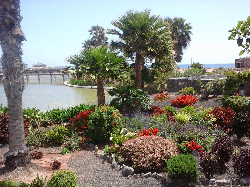 stroll in the gardens, by the sea. Or just sit in one of Atlantico's cafes & watch the world go by.