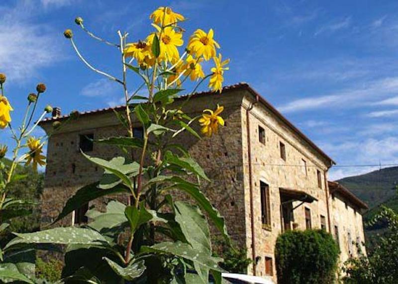Agriturismo Al Palazzaccio Volpe, location de vacances à La Gabella