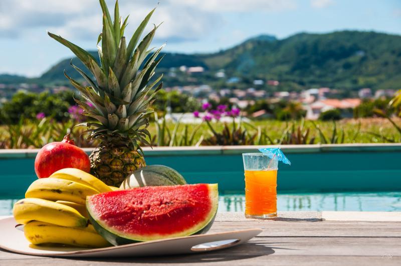 Villas 5* Palm - piscine privée - à 200m de la mer, holiday rental in Martinique