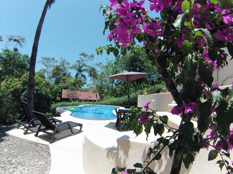 Casa Camino Viejo/ NEW!  Eco friendly pool, location de vacances à Parc national Manuel Antonio