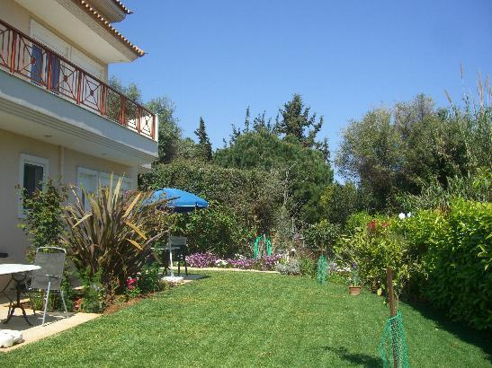 Studio and garden
