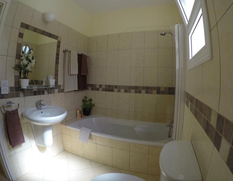 1-Bedroom Apartment, Bathroom