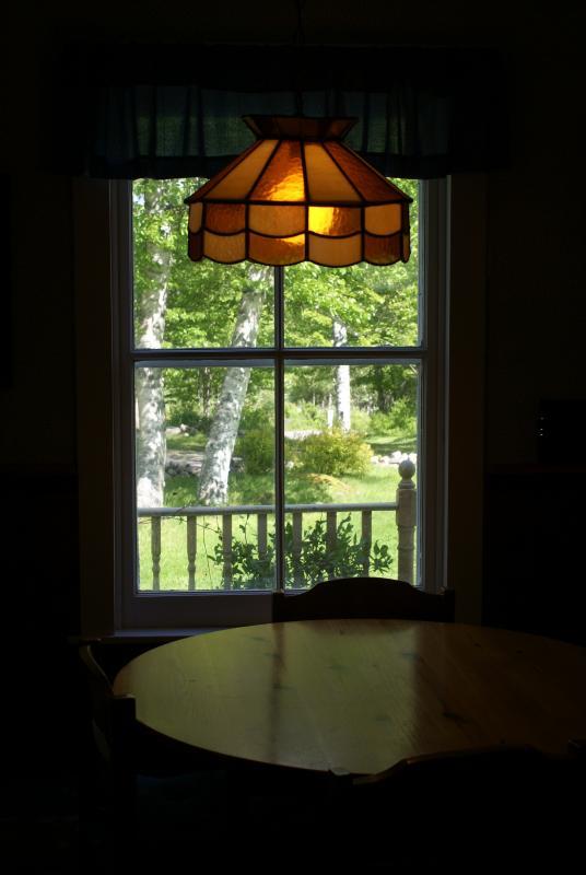 La vista desde la cocina