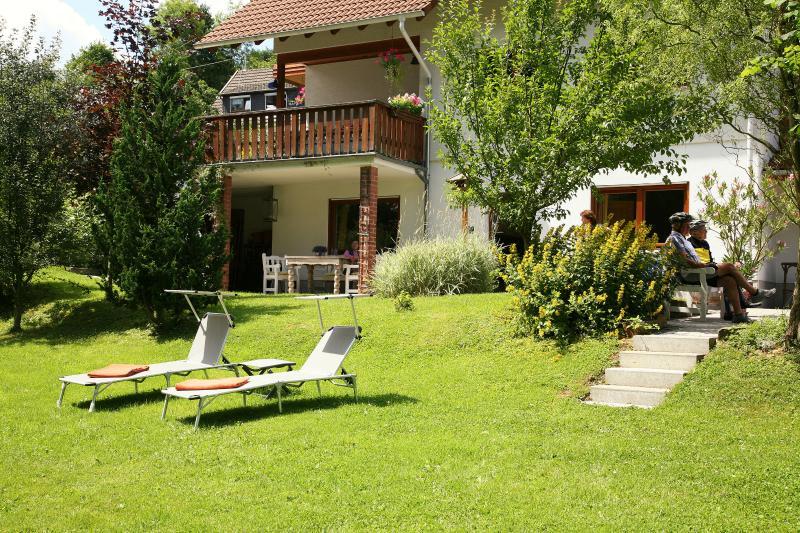 Garden with lawn