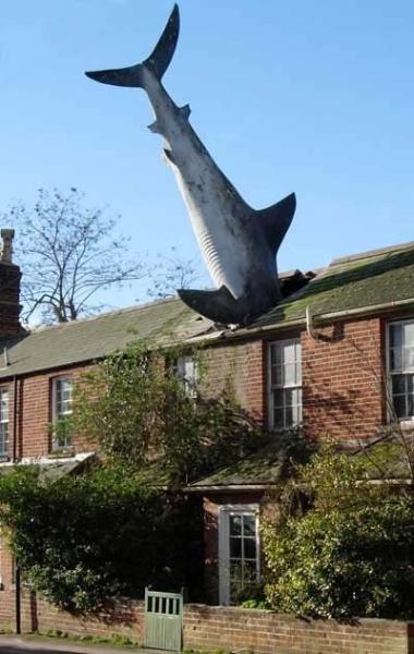 The famous shark in Headington