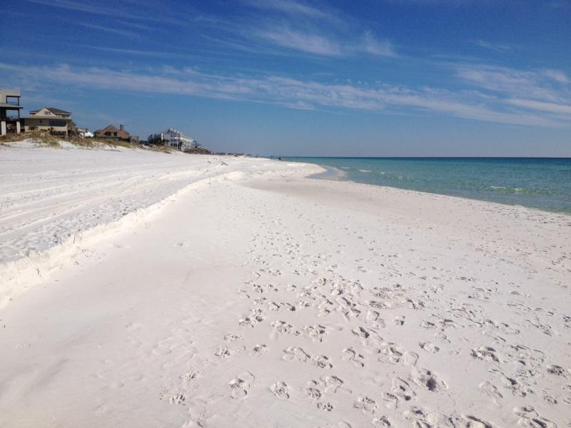 The Beautiful White Sandy Beaches in 30A