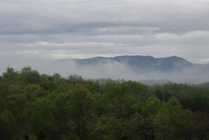 view of the Great Smoky Mountains! Picture taken 04/14/2015