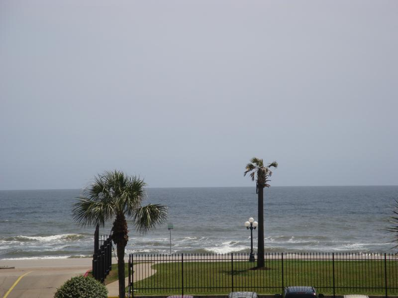 Ocean/ Pool View
