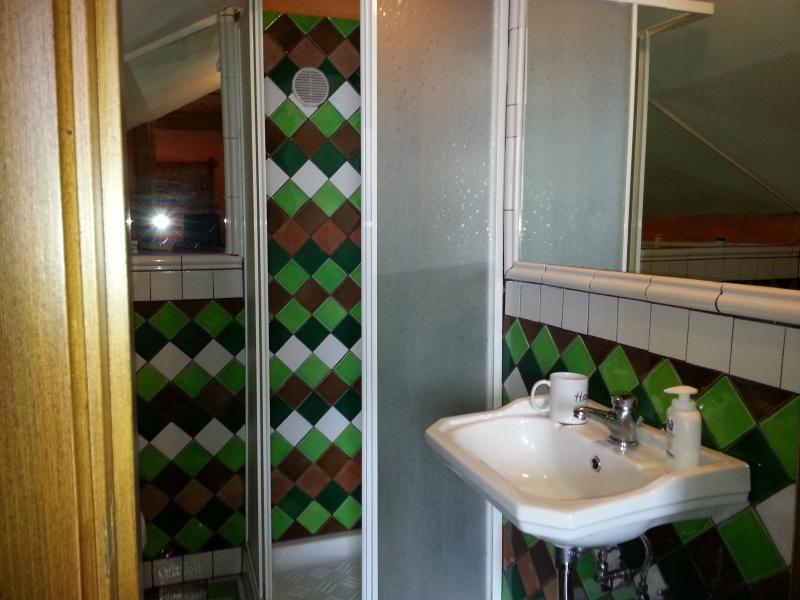 il lavandino con la cabina doccia