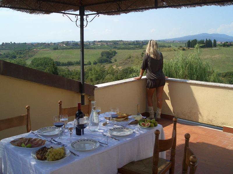 Dimora tipica in campagna a 15 minuti da Firenze, holiday rental in San Vincenzo A Torri