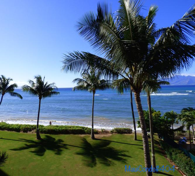 Direct Oceanfront Condo In Kahana on West Maui, vacation rental in Lahaina