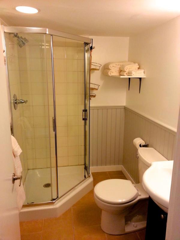 Cuarto de baño con toallas de ducha y algodón standup