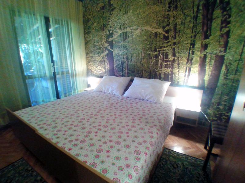 Very pleasant forest wallpaper in the smaller bedroom.