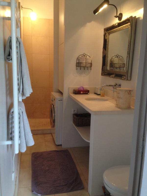 Bathroom with walk-in shower and washing machine