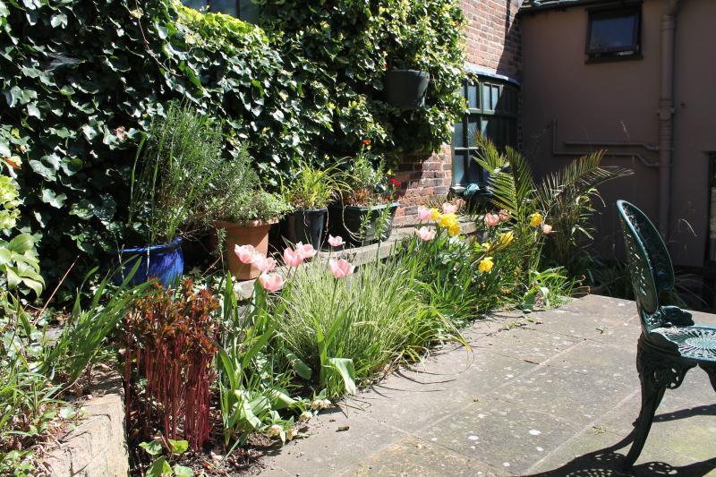 Terrace herbaceous border