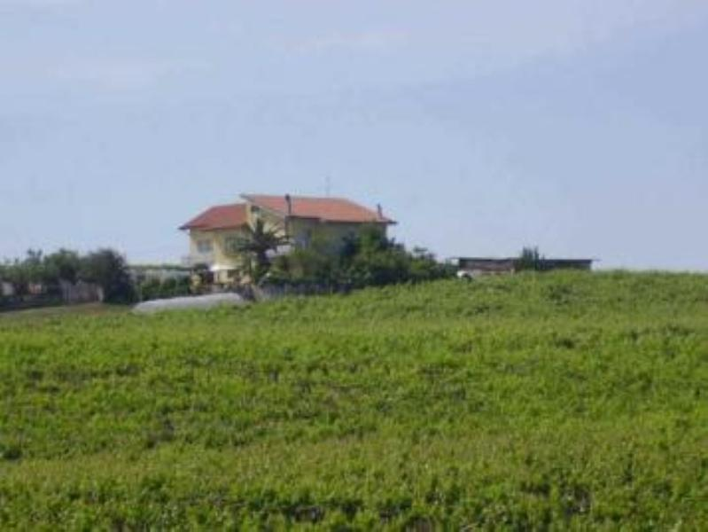 Il Vigneto 3, vacation rental in Petacciato