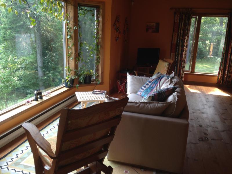 Vista de sala de estar y ventanas panorámicas