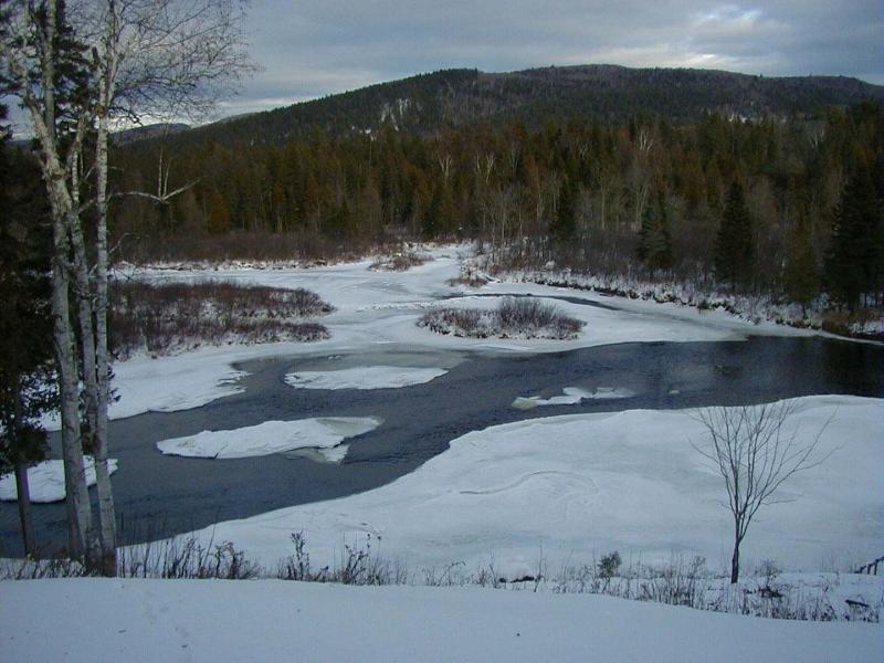 Vista río en invierno